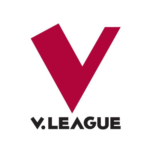 Giải vô địch bóng đá Việt Nam V.League